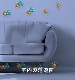 室内の浮遊菌